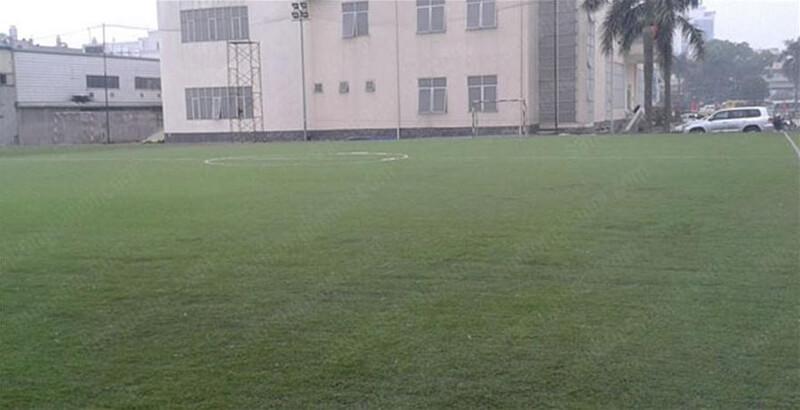 Sân bóng Nhà văn hóa Thanh Xuân